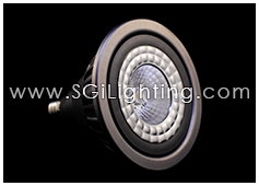 Image of SGi's LED Lamp 17 Watt PAR38