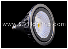 Image of SGi's LED Lamp 19 Watt PAR38