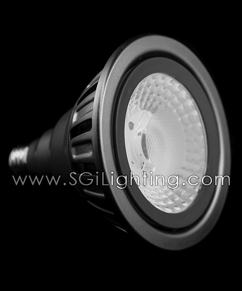 SGi LED Lamps_[P] 19 Watt PAR38