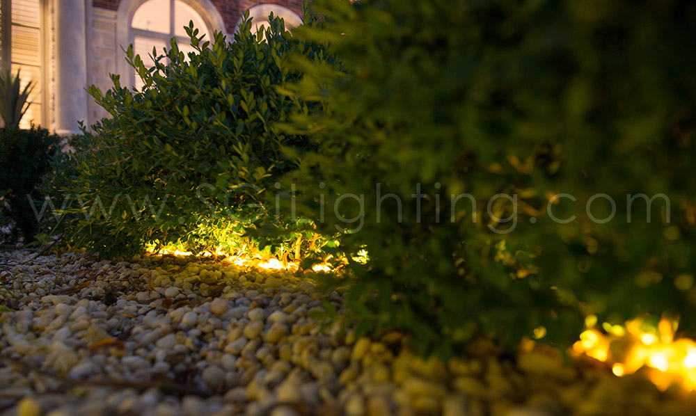 Image of SGi's LED Accent Lighting in a Landscape Application