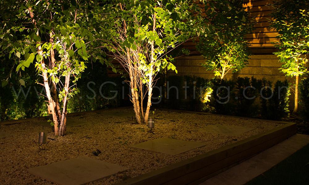 Image of SGi's LED Spot Lighting in a Landscape Application